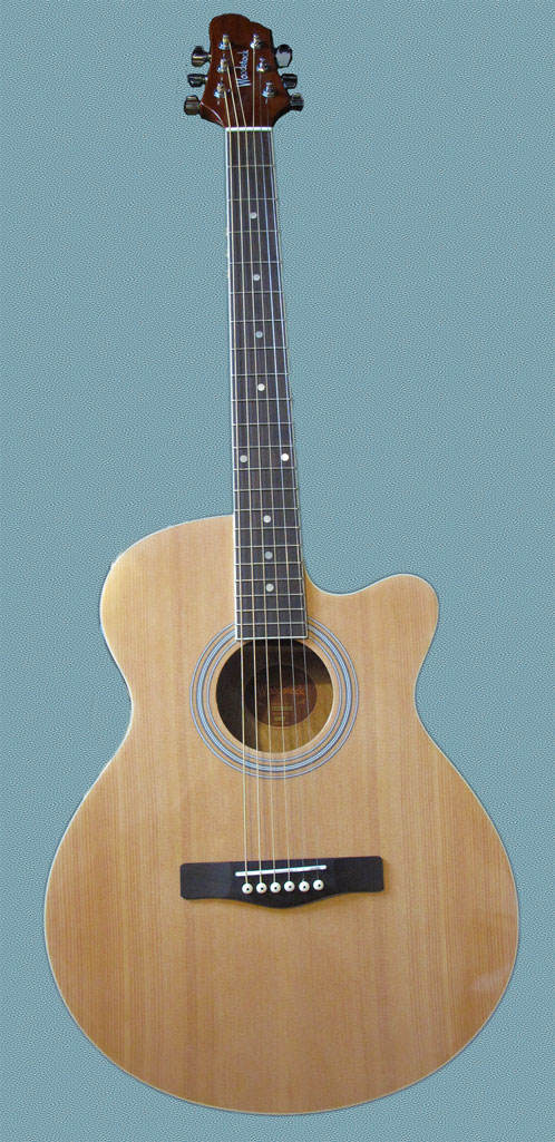 woodstock-guitar-front-stylized-1024